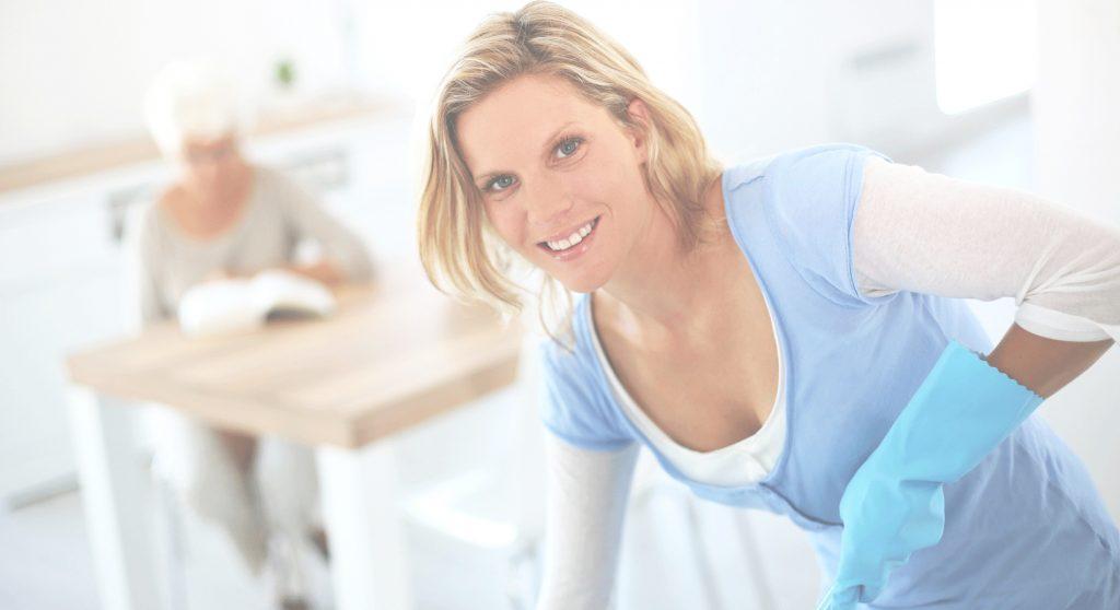 services à domicile - ménage - aide ménager - aide ménagère